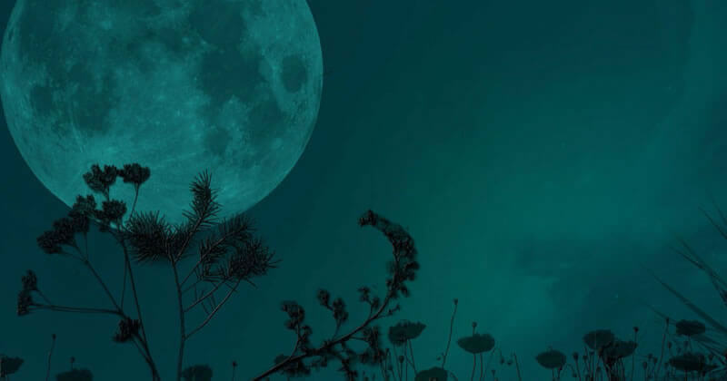 Lua Vazia: Instrospecção e Imprevisibilidade
