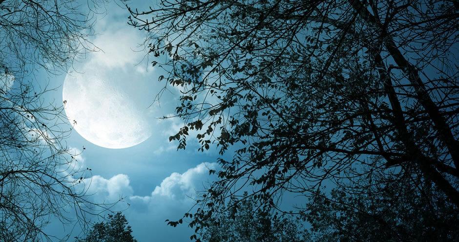 As Fases da Lua na Magia