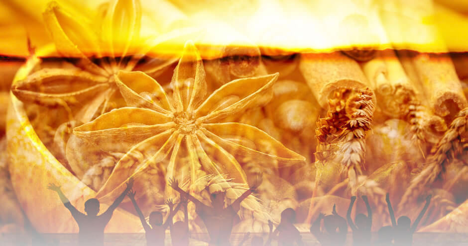 Diego de Oxóssi: Odus de Nascimento e Jogo de Búzios | Dizem que o dinheiro não compra a felicidade... E essa é uma grande verdade! Porém, a falta de dinheiro certamente nos trás preocupações e problemas...