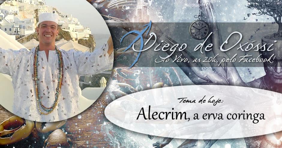 Arole Cultural: Arole Cultural | Já está no ar o Programa Diego de Oxóssi dessa semana e o tema é Alecrim, a erva-coringa. . Nele eu conto um pouco mais sobre as propriedades mágicas...
